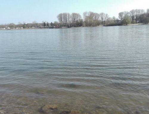 Teich überwintern» wertvolle Ratschläge, Tipps &Tricks