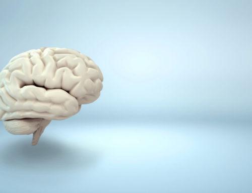 Gehirnjogging» Bewegung für die grauen Zellen